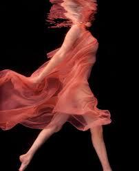 http://www.vanityfair.com/culture/features/2007/11/schatz_portfolio200711